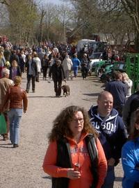 Folk vimlade längs festivalgatan.