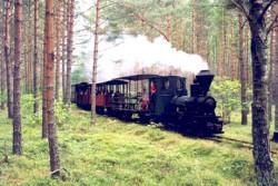 skogsjarnvagen-on-our-way
